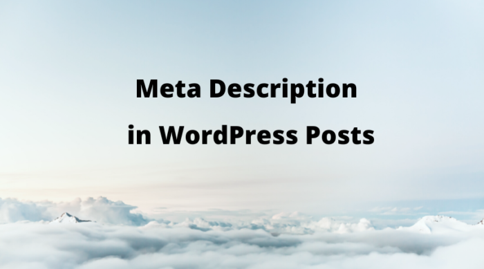 Should You Add Meta Description To WordPress Post Or Not