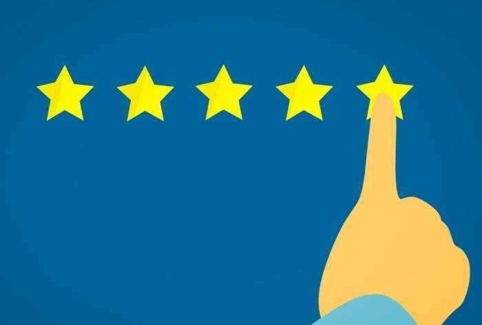 Google's Starmageddon - Why Star Ratings Dissappear in SERPs
